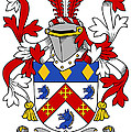 Dermond Coat Of Arms Irish by Heraldry