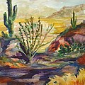 Desert Color by Charme Curtin