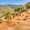 Desert Colors by Deborah Smolinske