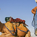 Desert Dance Of The Dromedary And The Camel Driver by Jo Ann Tomaselli