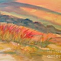 Desert Dreams by Dona Dugay
