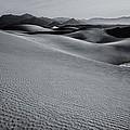 Desert Forms by Gene Garnace