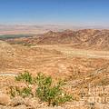 Desert Highway by Deborah Smolinske