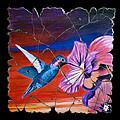 Desert Hummingbird by Steve Bogdanoff