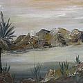 Desert In Monachrome by Judi Pence