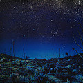Desert Meteor by Matthew Pinkey