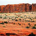 Desert Monolith by Frank Wilson