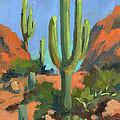 Desert Morning Saguaro by Diane McClary