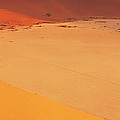 Desert Namibia by Panoramic Images