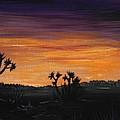 Desert Night by Anastasiya Malakhova