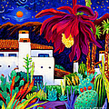 Desert Night Music by Cathy Carey