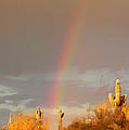 Desert Promise by Laurie Larson