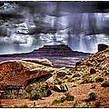 Desert Rain by David Neely