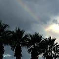 Desert Rainbow by Deborah Smolinske