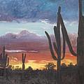 Desert Silhouette by Barbara McDevitt