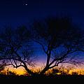 Desert Silhouette by Chad Dutson