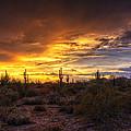 Desert Skies  by Saija  Lehtonen