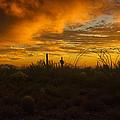 Desert Southwest Skies  by Saija  Lehtonen