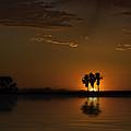 Desert Sunset by Lynn Geoffroy
