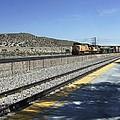 Desert Train by Steve  Ondrus