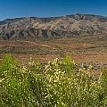 Desert Valley Scene 7 by Douglas Barnett