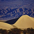 Desert Wave by Michael Courtney