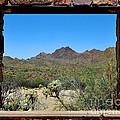 Desert Window by Jemmy Archer