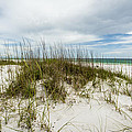 Deserted Beach by David Morefield