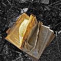 Deserted Book