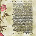 Desiderata Poem With Bamboo And Butterflies by Desiderata Gallery