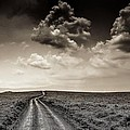 Desolation Road by Gene Myers