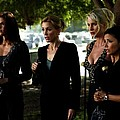 Desperate Housewives Tv Serie - 1 by Gabriel T Toro