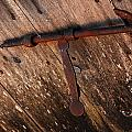 Detail Antique Door by Gina Dsgn