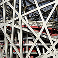 Detail Of The Beijing National Stadium by Brendan Reals