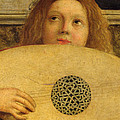 Detail Of The San Giobbe Altarpiece by Giovanni Bellini