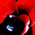 Devilish Eye Of The Bromeliad by Antonia Citrino
