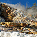 Devils Thumb At Mammoth Hot Springs by Fred Stearns