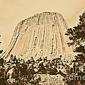 Devils Tower National Monument Between Trees Wyoming Usa Rustic by Shawn O'Brien