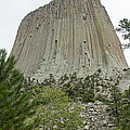 Devils Tower National Monument by Fred Stearns