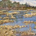 Devon Bog Oil by Mohamed Hirji