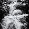 Devon River Monochrome by Tim Gainey