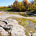 Devonian Fossil Gorge Coralville Lake Ia 1 by Cynthia Woods