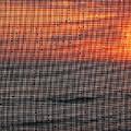 Dew Drop Sunrise by Rick Locke