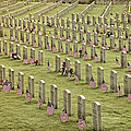 Dfw National Cemetery II by Joan Carroll