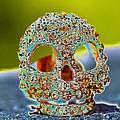 Dia De Los Muertos Skull by Michael Moriarty