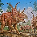 Diabloceratops by Phil Wilson