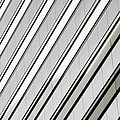 Diagonal Lines Of A Chicago Building by Anthony Doudt