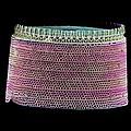 Diatom, Sem by Science Photo Library