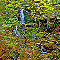 Dickson Falls In Fundy Np-nb by Ruth Hager