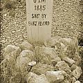 Died 1885 Tomstone Arizona by John Malone